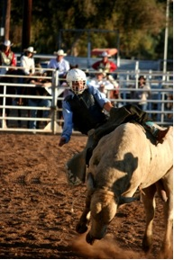 Every bull rider gets one chance to prove himself. This bull rider is about to hit the ground right before his legal eight second ride. (Naomi Klocmann/Borderzine.com)