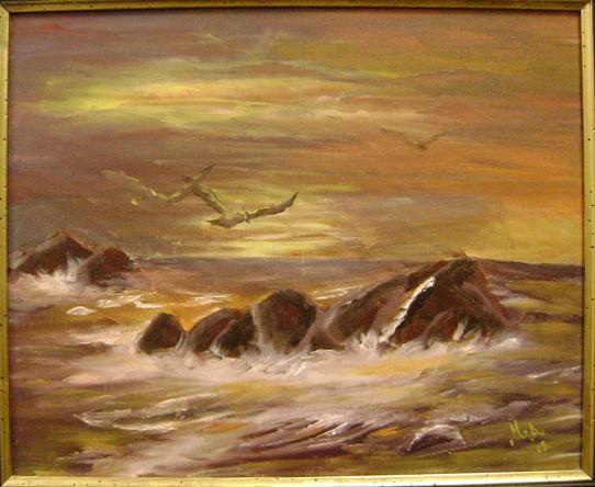 Gaviota sobre las aguas de Martha Arenas. (Jago Molinet/Borderzine.com)