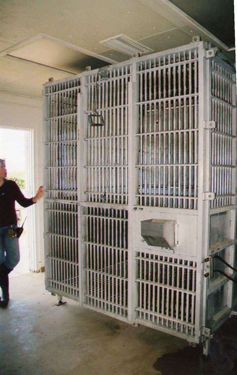 Jen Feuerstein shows the cages used by TCF to confine chimps. (Danya Hernandez/Borderzine.com)