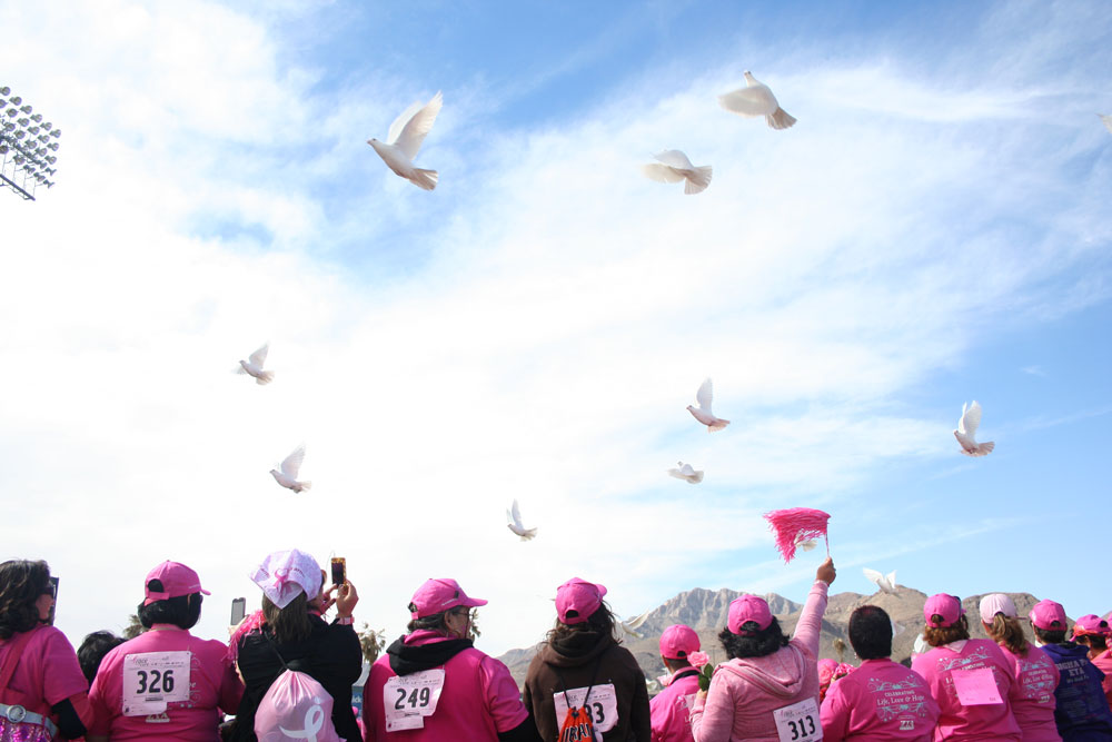 White doves fill the sky as they are released in celebration of the hundreds of breast cancer survivors who took part in Race for the Cure. (Diana Amaro/Borderzine.com)