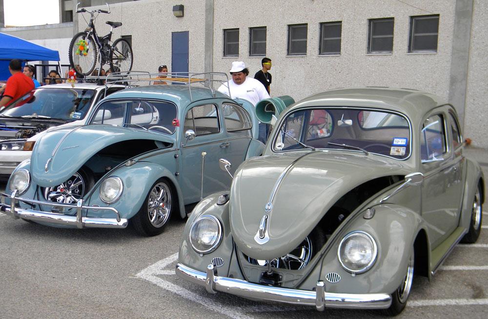 Beetles. (Georgia Rodriguez/Borderzine.com)