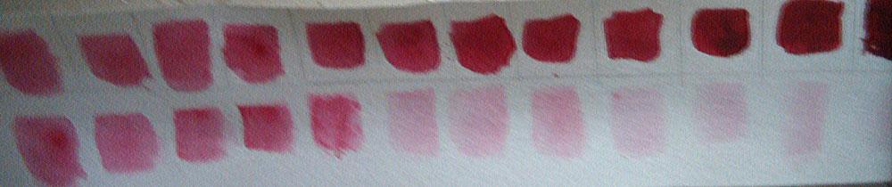 24 shades of red. (Courtesy of Josie Jimarez Howard)