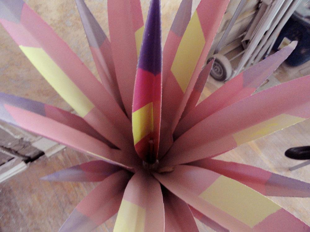 A rose agave, the emblem of the new gallery. (Christina Villegas/Borderzine.com)