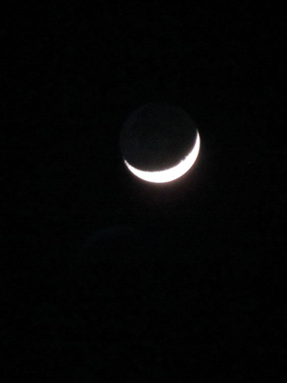 12/27/11 moon. (Cheryl Howard/Borderzine.com)
