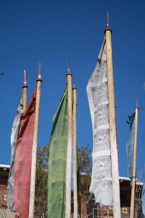 Bhutanese prayer flags on UTEP campus. (Cheryl Howard/Borderzine.com)