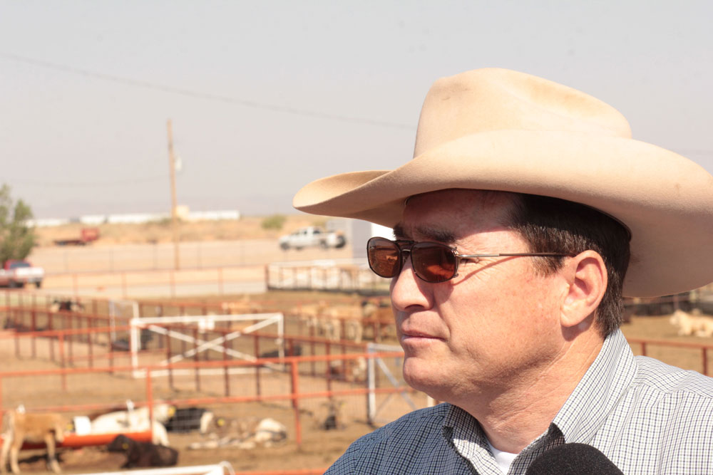 Daniel Manzanares, director of the Santa Teresa International Livestock Crossing, oversees hundreds of cattle crossings between Mexico and the U.S. each year. (Jasmine Aguilera/Borderzine.com)