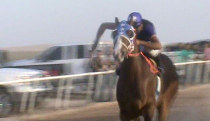 En Sunland Park, NM, es común ver a aficionados asistir a los entrenamientos de los caballos cuarto de milla. (Kristopher Rivera/Borderzine.com)
