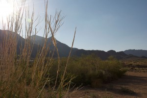 The Franklin mountains are the backyard for El Pasoans on the Northeast. (Vanessa Juarez/Borderzine.com)