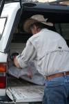 Jamie preparing to transport. (Cheryl Howard/Borderzine.com)
