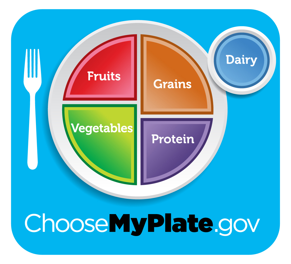 """According to the site ChooseMyPlate.gov the MyPlate icon illustrates the five food groups and was designed to """"remind Americans to eat healthfully"""". (©ChooseMyPlate.gov)"""