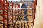 Workers at the Santa Teresa International Export/Import Livestock Crossing prepare for hundreds of head of cattle to cross from Mexico. (Teresa Hernandez/Borderzine.com)