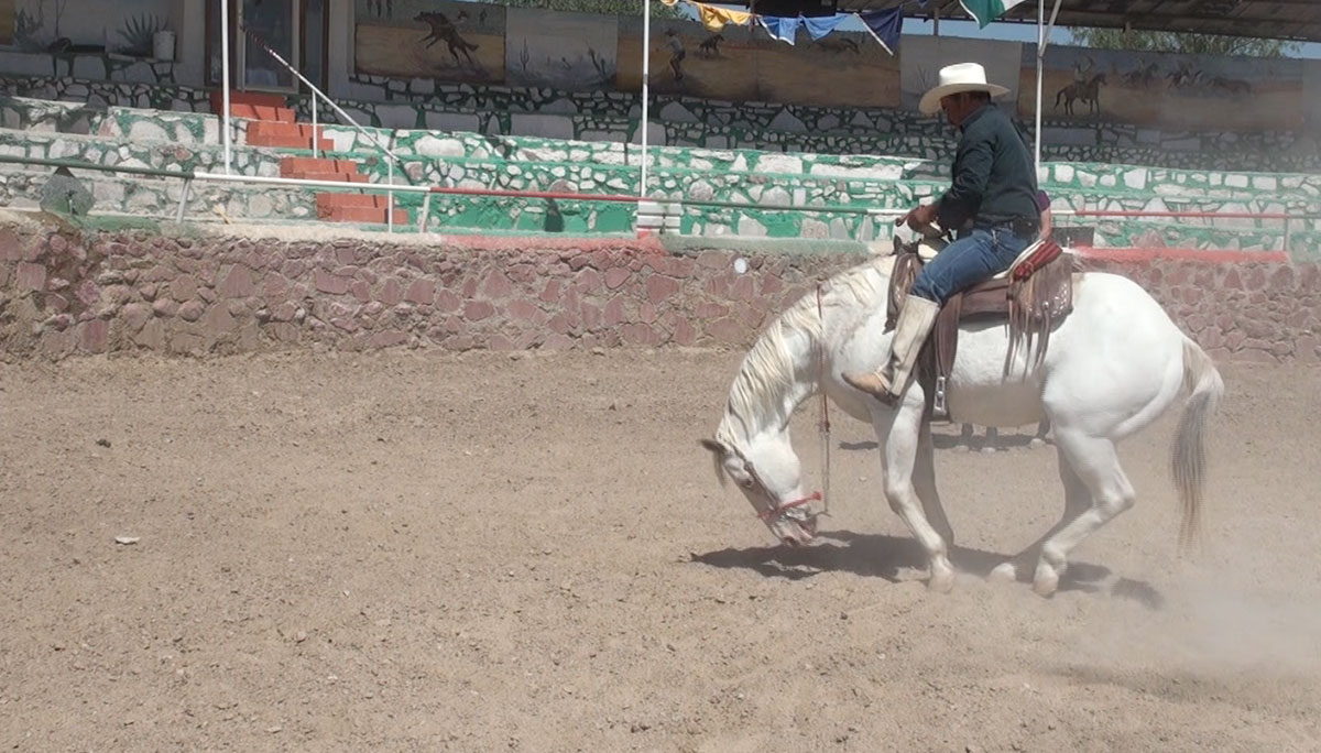 Pedro Castro demonstrates a suerte, or trick, that he and his horse perform in la charrería. (Steve Elliott/Borderzine.com)