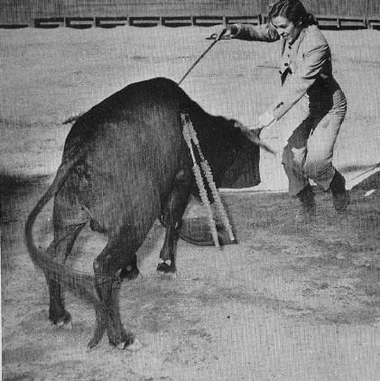 McCormick evita los cuernos del toro mientras trata de enterrarle la espada. (©Henry Holt & CO.)