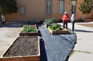 Mustard Seed Cafe community garden