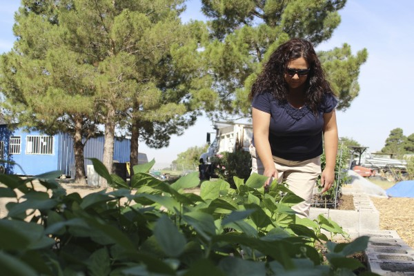Denise Rodriguez organized El Paso County's first community garden in Ascarate Park. The garden has donated more than 1,000 pounds of food to a local food bank. (Celeste González de Bustamante/Borderzine.com)