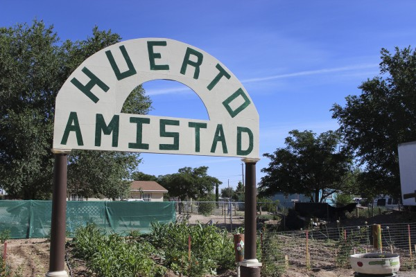 About 25 people participate in the Huerto Amistad garden on Beverly Ann in San Elizario. The garden was started in 2013. (Kirstie Hettinga/Borderzine.com)