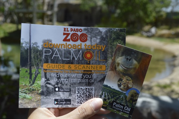 el paso zoo palm oil app