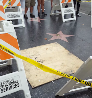 Picture of Donald Trumps star covered with a piece of plywood, and caution signs surrounding the star. Photo credit: David Caro