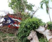 A siete meses de la destrucción del huracán María, los puertorriqueños sienten su ciudadanía a medias